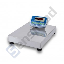 Платформенные весы СКЕ-RS 300-6080